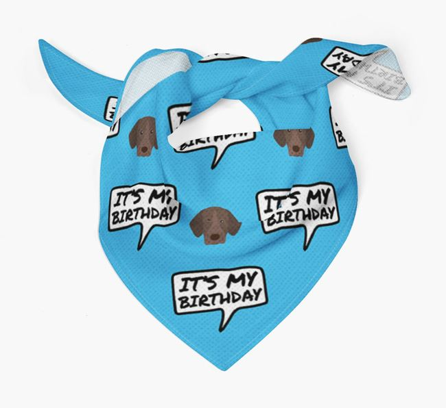 It's My Birthday German Shorthaired Pointer Bandana