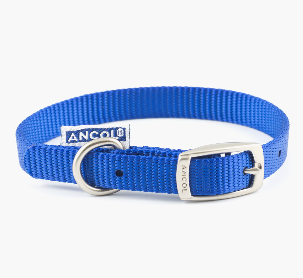 Poodle {colour} Ancol Nylon Collar