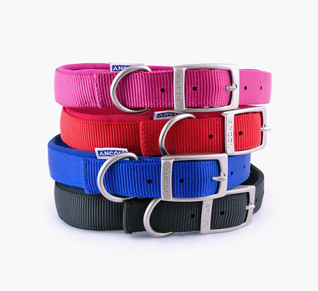 Ancol Padded Nylon Collar