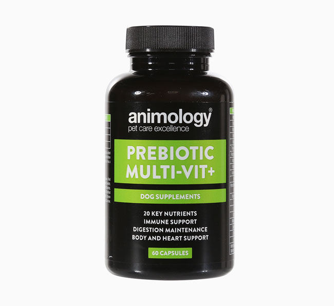Animology Prebiotic Multivit+ Supplement