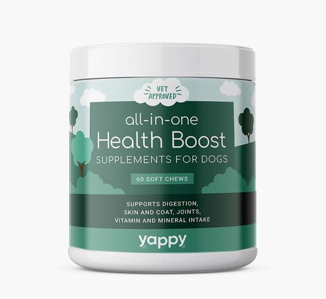All-in-one Schnauzer Supplements for Schnauzers