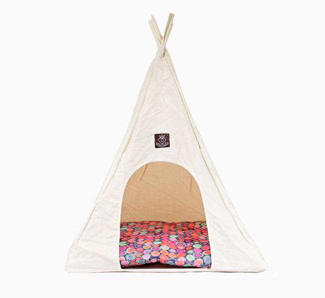 Teepee for your Boston Terrier