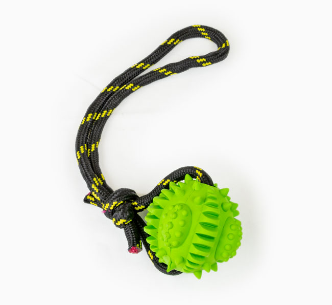 Galactic Rope Ball Poodle Toy