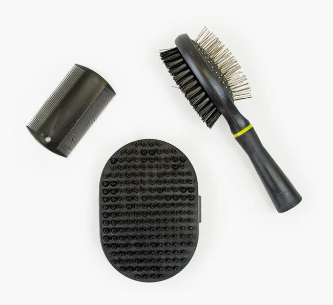 Puppy Grooming Starter Set for your Springador