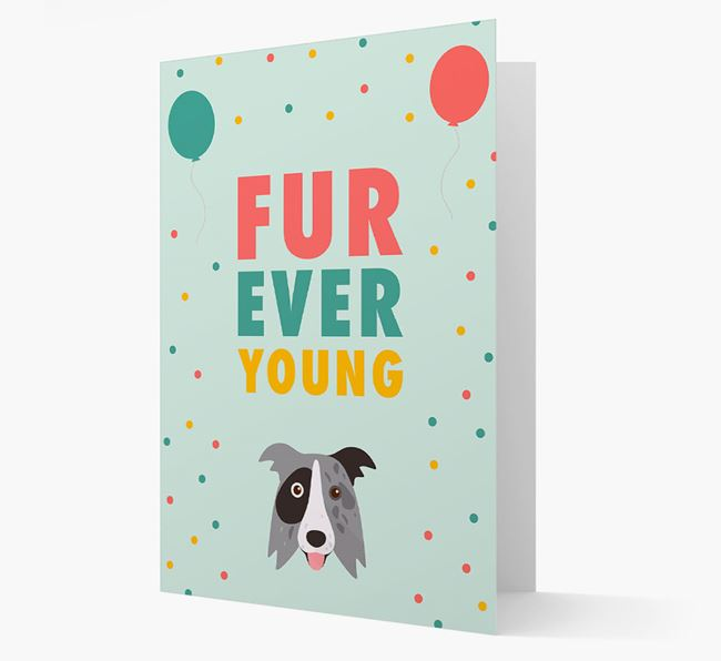 'Fur-Ever Young' Card with Border Collie icon