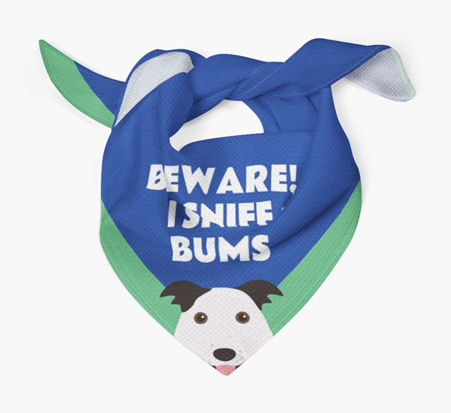 'Beware! I Sniff Bums' Dog Bandana for your Border Collie