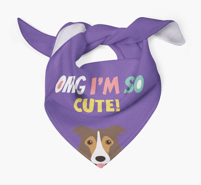 'OMG I'm So Cute' Dog Bandana for your Border Collie