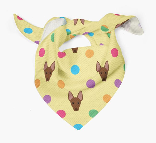 'Spots' Bandana for your American Hairless Terrier