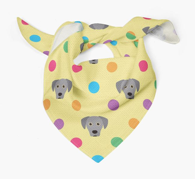 'Spots' Bandana for your Blue Lacy