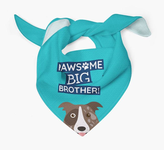 Pawsome Big Brother Bandana for your Border Collie
