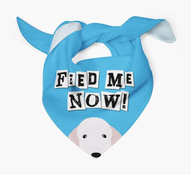'Feed Me Now' Bandana for your Bedlington Terrier