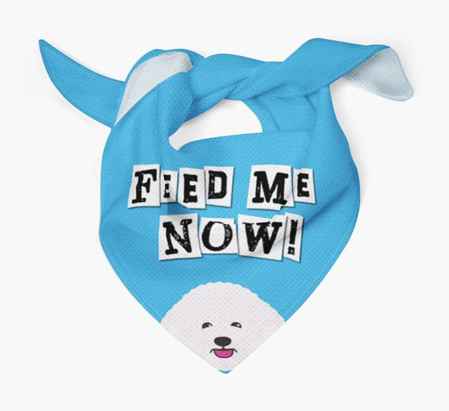 'Feed Me Now' Bandana for your Bichon Frise