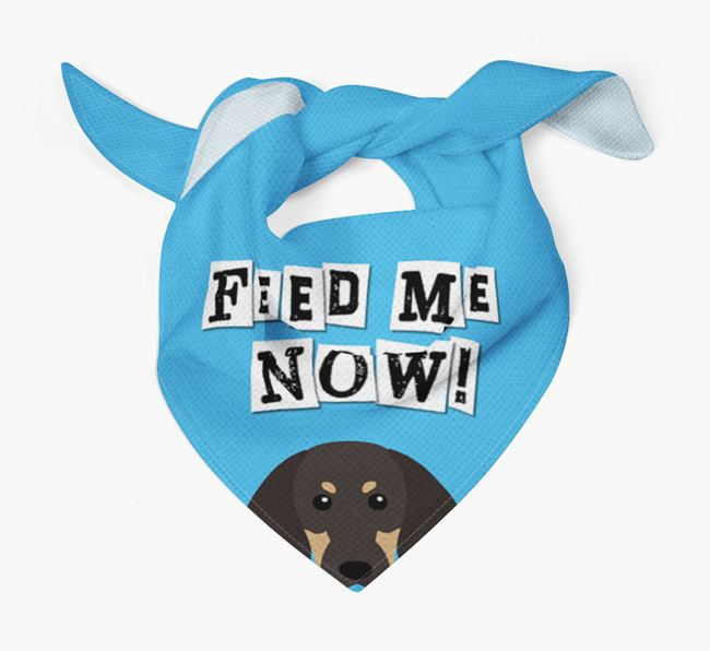 'Feed Me Now' Bandana for your Black and Tan Coonhound