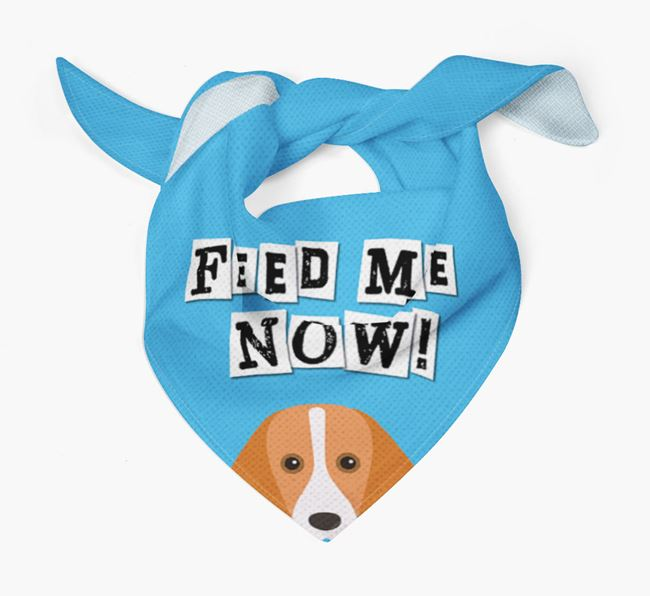 'Feed Me Now' Bandana for your Foxhound