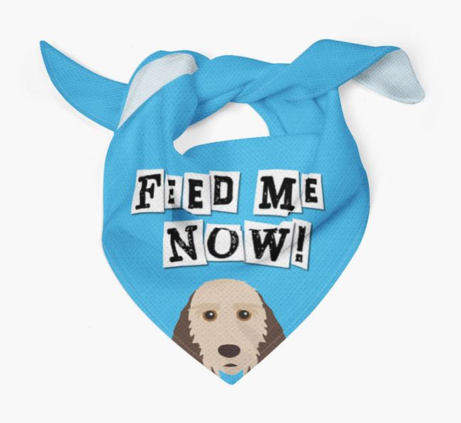 'Feed Me Now' Bandana for your Grand Basset Griffon Vendeen