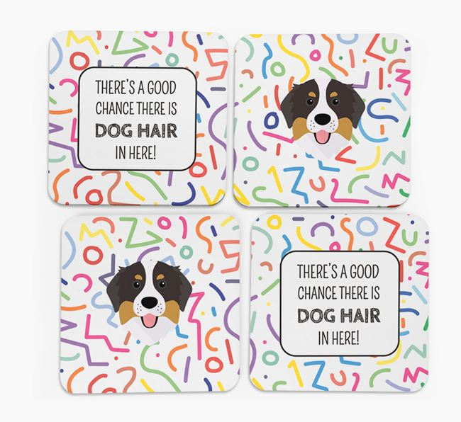 'Chance of Dog Hair' Coasters with Bernese Mountain Dog icon