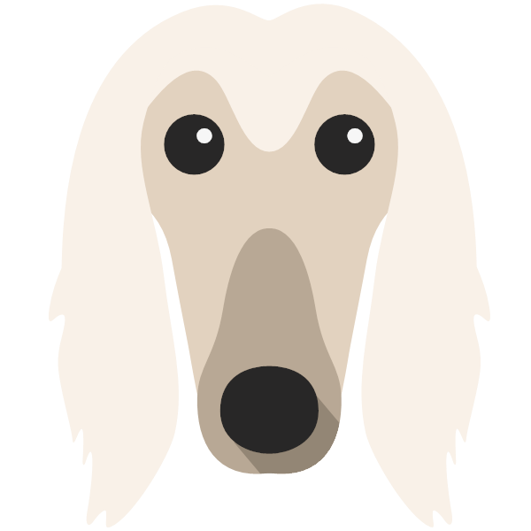 afghanhound-02 Yappicon