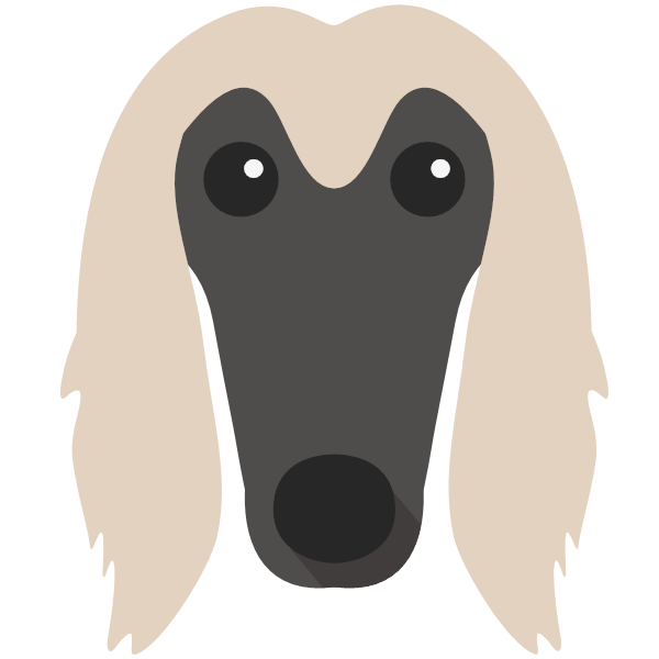 afghanhound-04 Yappicon
