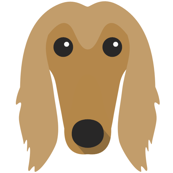 afghanhound-05 Yappicon