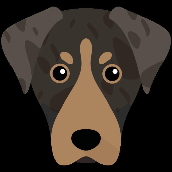 americanleopardhound-02 Yappicon