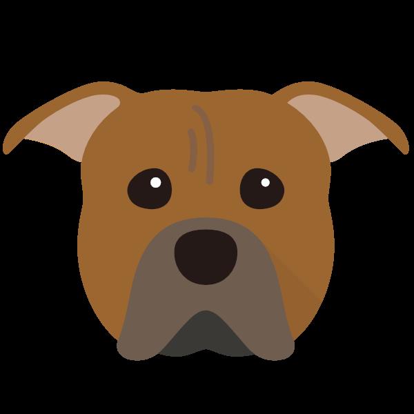 americanpittbullterrier-02 Yappicon