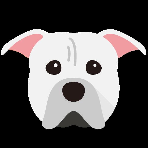 americanpittbullterrier-03 Yappicon