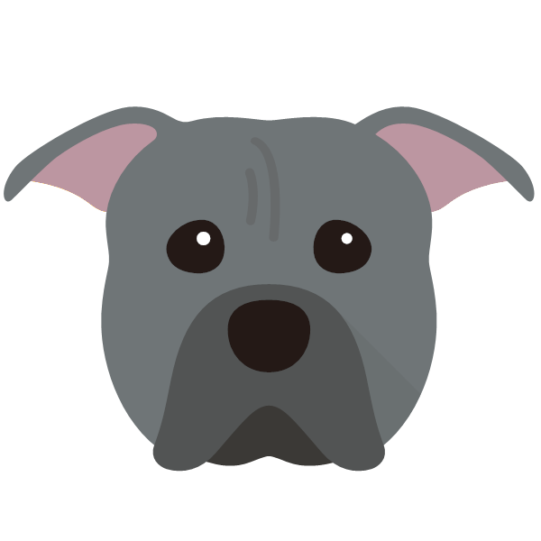 americanpittbullterrier-04 Yappicon
