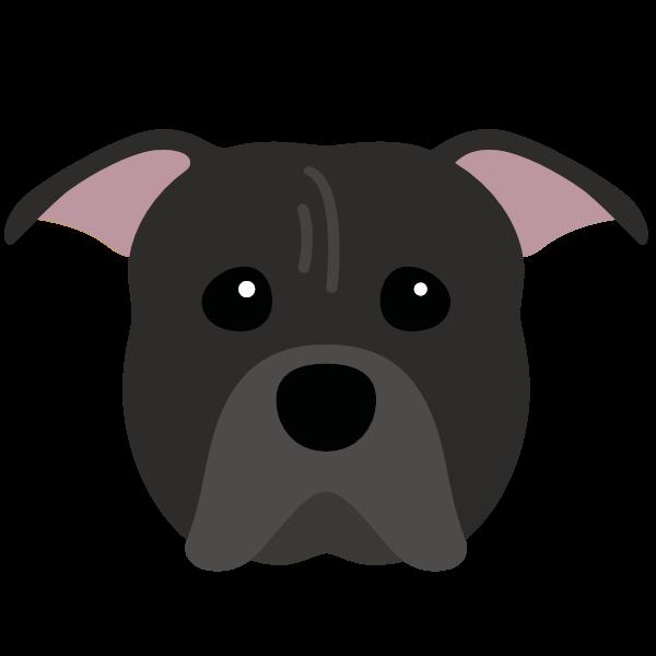 americanpittbullterrier-05 Yappicon