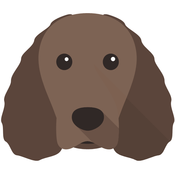 americanwaterspaniel-01 Yappicon