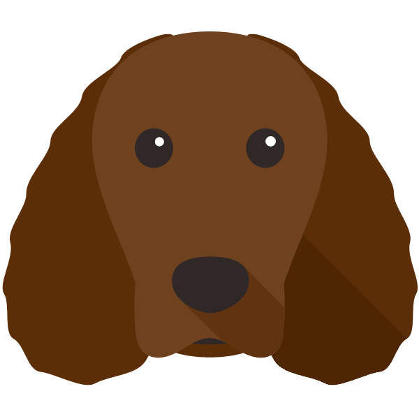 americanwaterspaniel-02 Yappicon