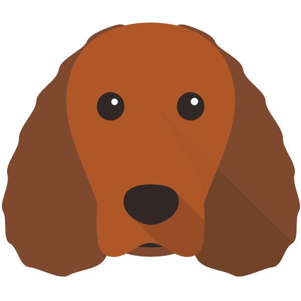 americanwaterspaniel-03 Yappicon