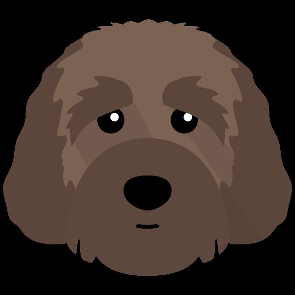 Chester icon