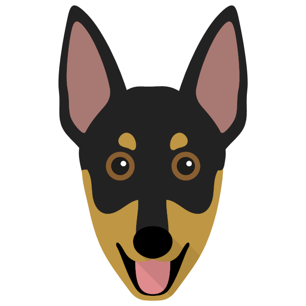 australianworkingkelpie-01 Yappicon
