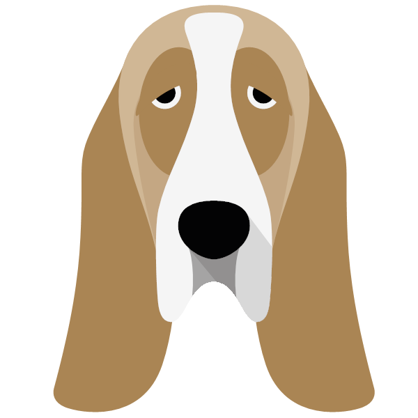 bassethound-04 Yappicon