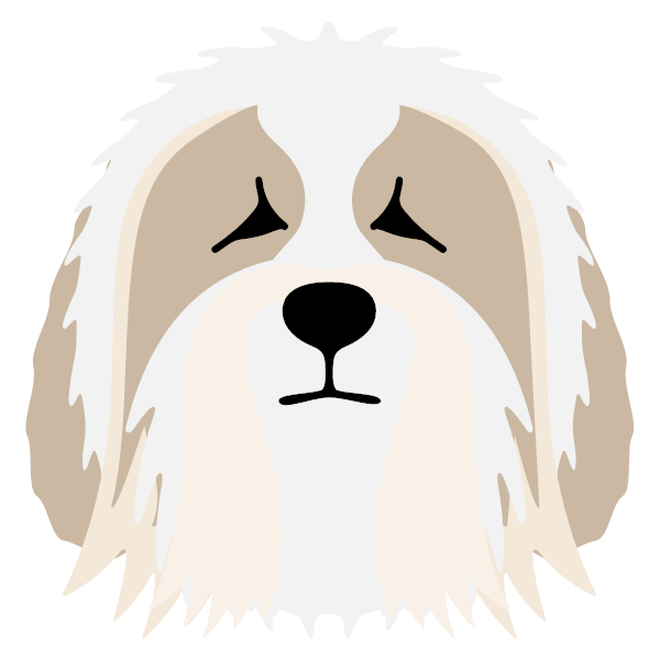 beardedcollie-02 Yappicon