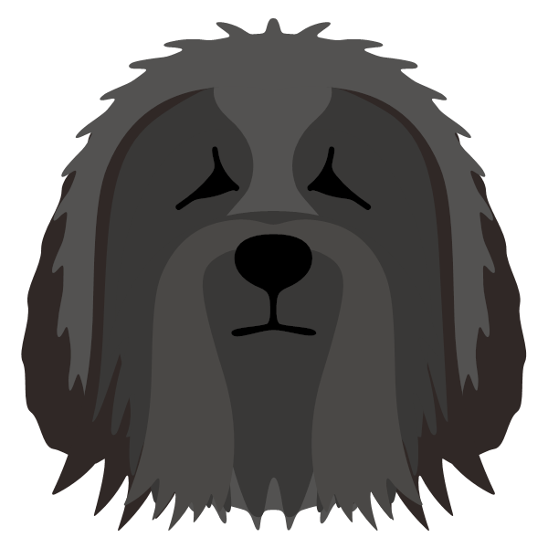 beardedcollie-04 Yappicon