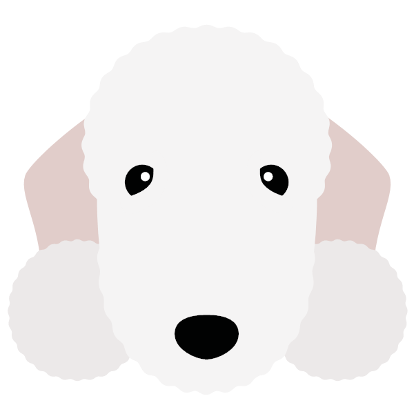 bedlingtonterrier-01 Yappicon