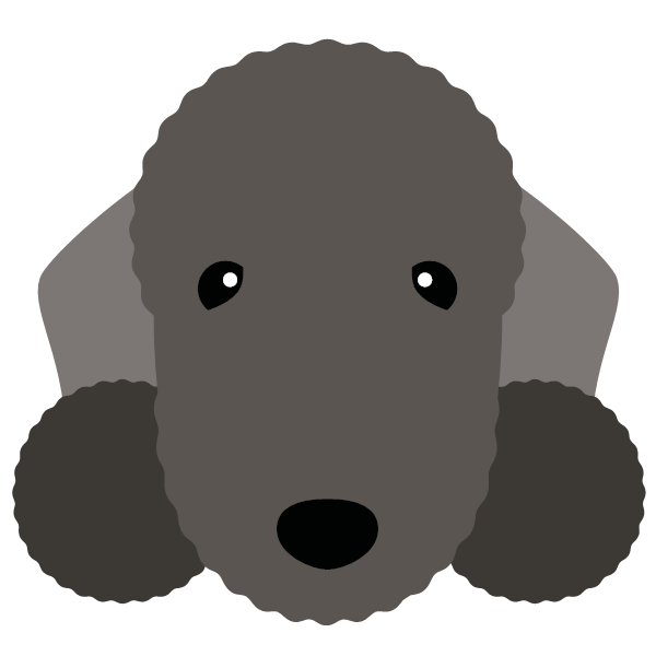 bedlingtonterrier-04 Yappicon