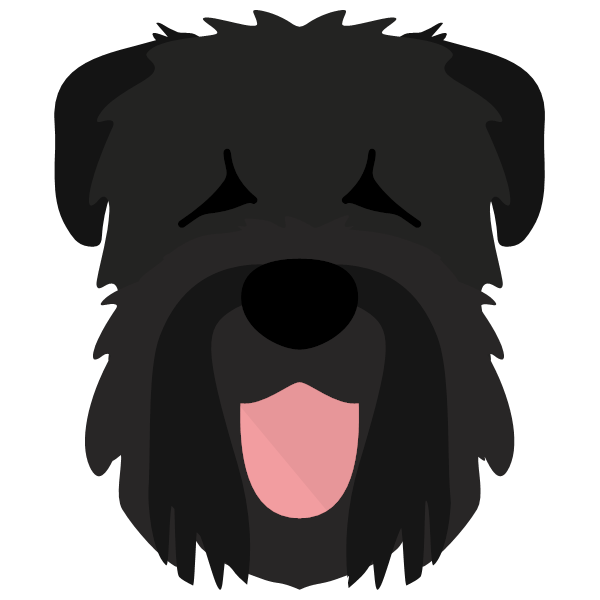 the Black Russian Terrier