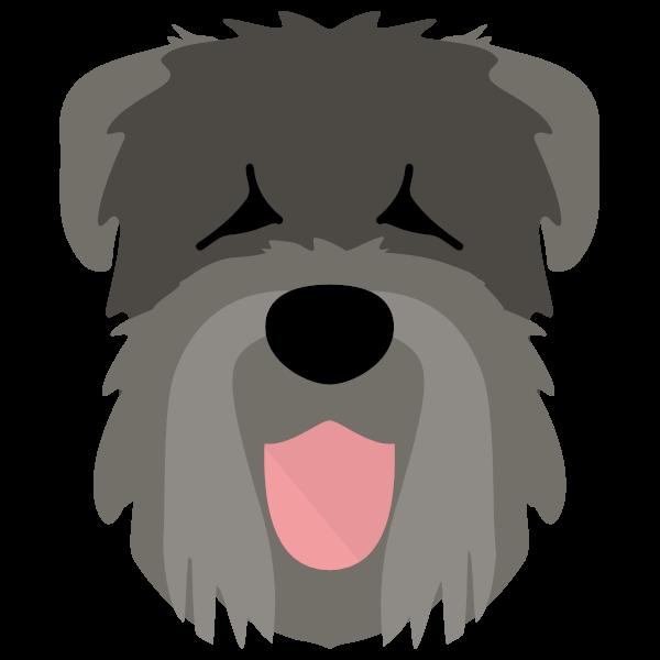blackrussianterrier-03 Yappicon
