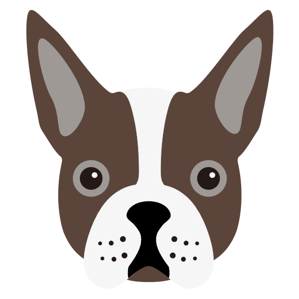 bostonterrier-02 Yappicon