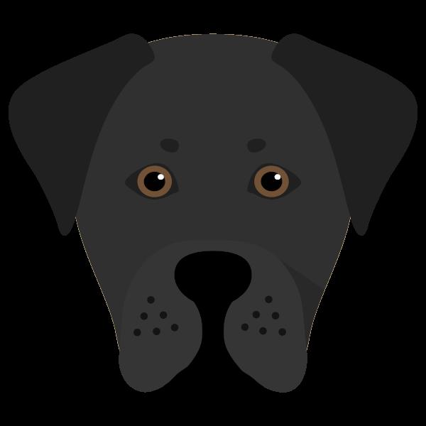 Brock icon