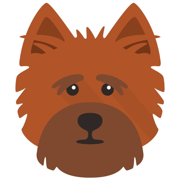 cairnterrier-03 Yappicon