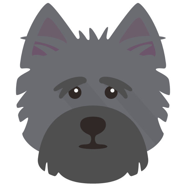 cairnterrier-04 Yappicon