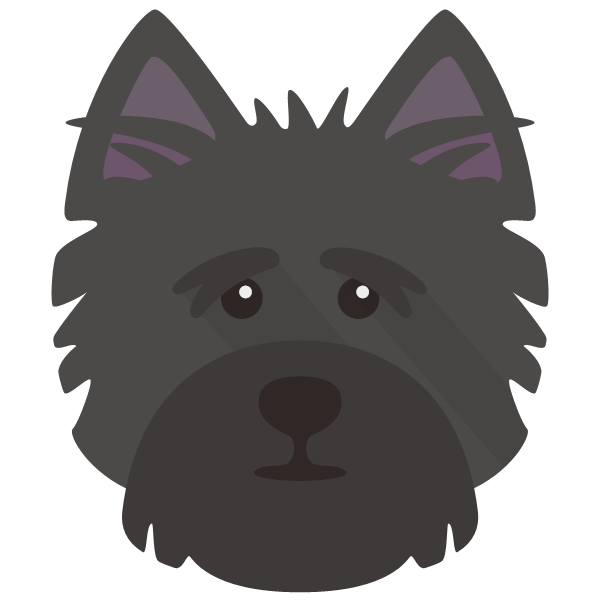 cairnterrier-05 Yappicon