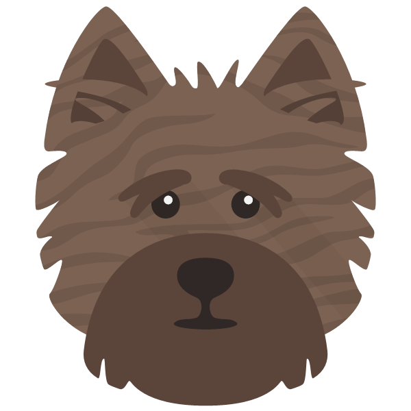 cairnterrier-06 Yappicon