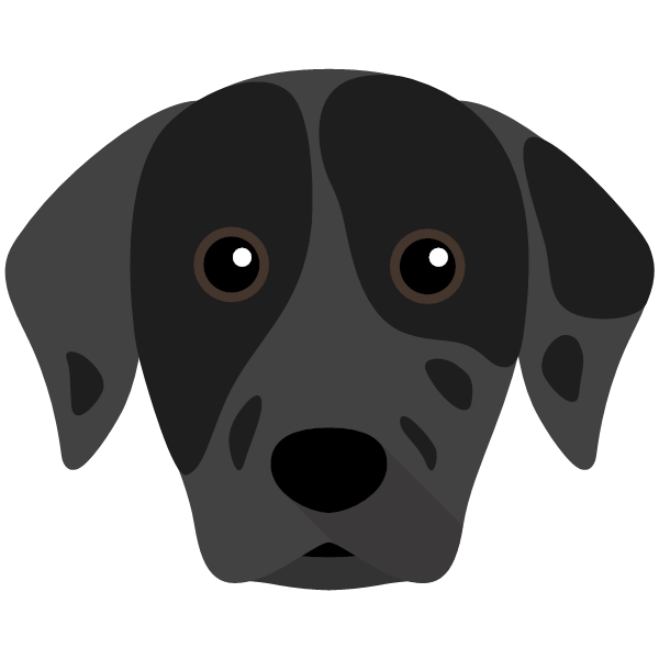 the Catahoula Leopard Dog