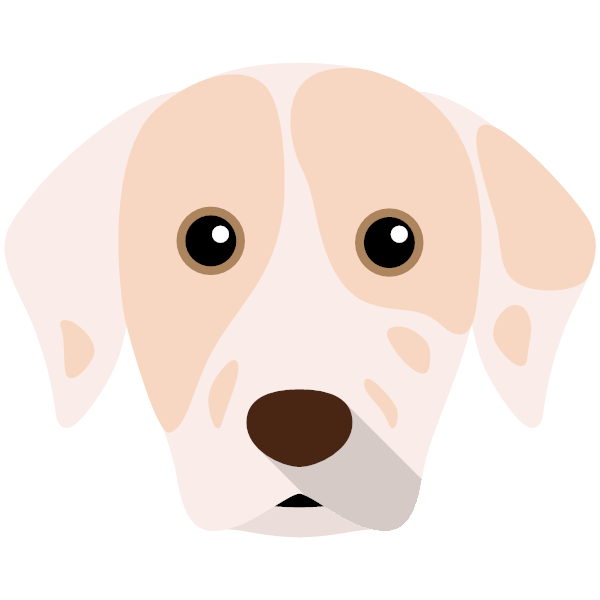 catahoulaleoparddog-04 Yappicon