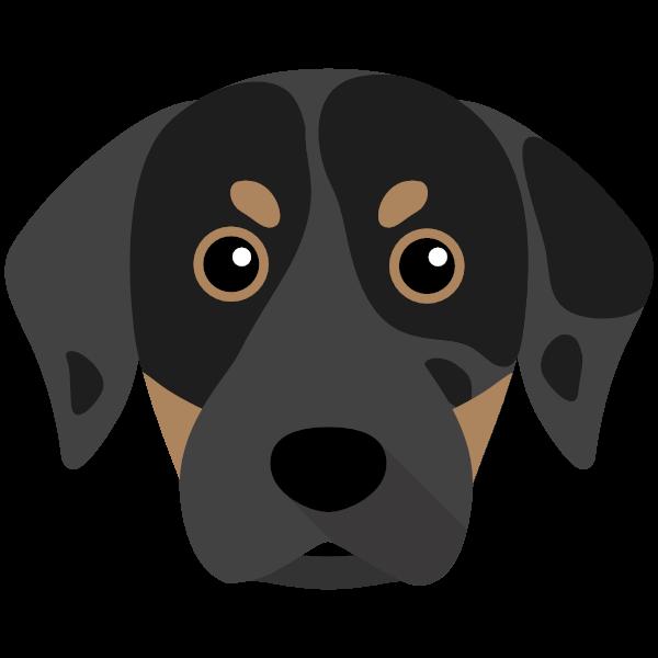 catahoulaleoparddog-05 Yappicon