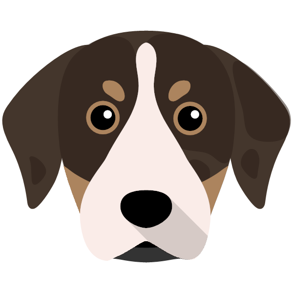 catahoulaleoparddog-06 Yappicon